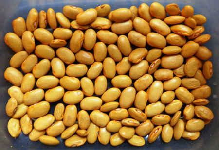 破壁机可以打生豆子吗?